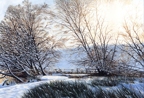 winter-willows
